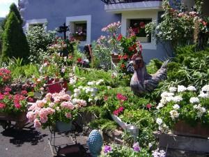jardin et roman 048
